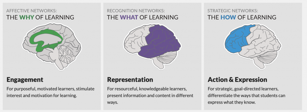 Affective networks help with the why of learning: focus on engagement. Recognition networks help with the what: focus on representation. Strategic networks work with the how: focus on action and expression.